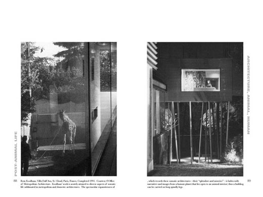 Architecture, Animal, Human